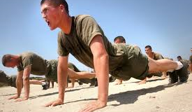THE POWER OF THE PUSH-UP