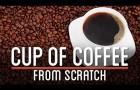 HOW TO MAKE COFFEE FROM SCRATCH