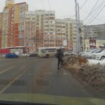 Dog Waits For Green Light To Cross The Street