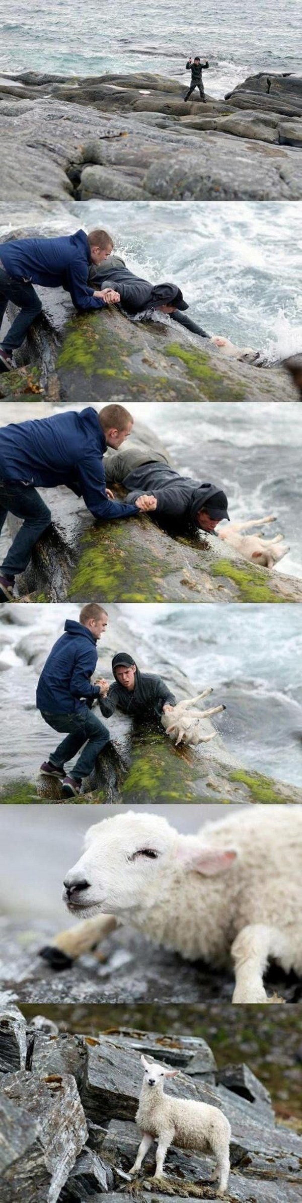 inspiring-photos-that-will-restore-your-faith-in-humanity017