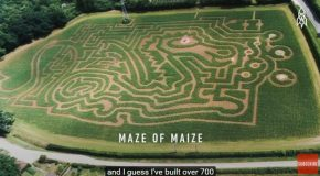 The Master Of Mazes