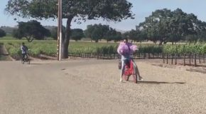 Kendall Jenner Bike Fail Video