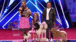 Family Act Brings 6 Circus Dogs On Stage, Wows Judges With Vegas-Worthy Performance.