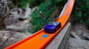 Hot Wheels Cars Race Through the Redwood Forest