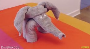 How to Make a Cute Elephant Display by Folding Towels