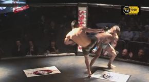 Brutal Head Kick Knockout