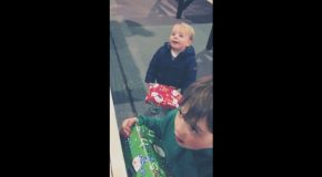 Kids Spot Naughty Xmas Toy And Completely Forget About Presents