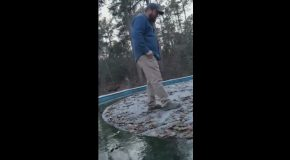 Falling Through Pool Ice