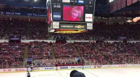 Fans at a Hockey Game Go Crazy For a Little Kid