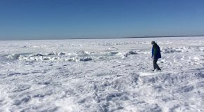 It's So Cold That The Ocean Is Freezing