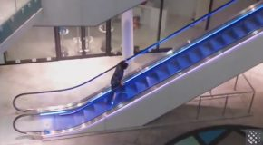 Drunk Dude Takes On Escalator