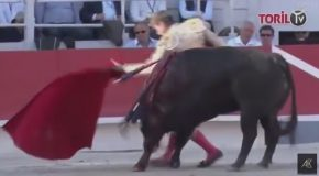 French Bullfighter Gets Spanked By Bull Pretty Hard