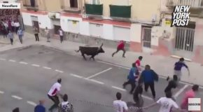 Running of the Bulls Participant Gets a Real @ss-Whupping