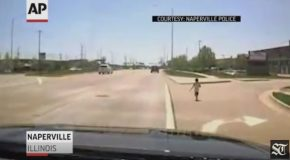 Officer Grabs Toddler from Side of Busy Road