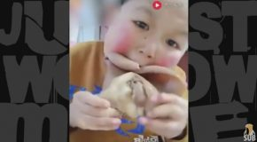 The Chinese Boy Who Eats Anything that Moves – Freaky Eaters