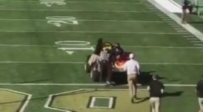 Colorado Mascot Carted Off Field After T-shirt Cannon Malfunction