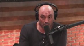 Joe Rogan Meets Joe Rogan For The First Time
