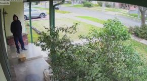 Guy Comes Up With an Evil Plan To Stop Package Thieves