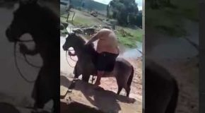 Super Obese Man Tries to Ride a Horse