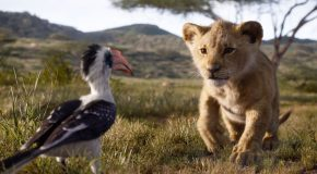 The 'Lion King' Official Trailer