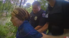 87 Year Old Woman Hit With Stun Gun by Police