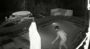 Couple Swimming In Their Pool When Attacked by a Cayman