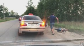 Taxi Driver In Russia Throws Passenger Out For Littering