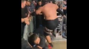 Wrestler Stops A Fan From Crossing the Guardrail with Physical Violence