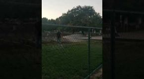 Entitled Woman in a Dog Park Argues