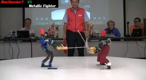 Robot Sword Fighters Going At It!