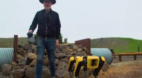 Adam Savage With Boston Dynamics' Spot Robot!