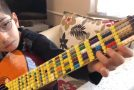 So You Like Playing Guitar And Playing With Legos?