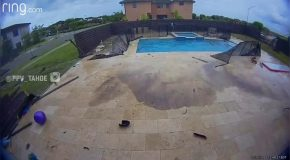 Home Security Camera Captures Car Crashing Into Pool