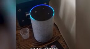 Amazon Alexa Doesn't Understand A Scottish Accent