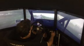 Rally Driver Totally Nails It In DiRT Rally Game!
