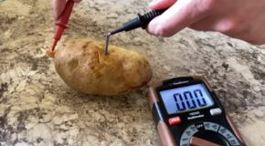 Guy Runs Doom Using Potatoes!