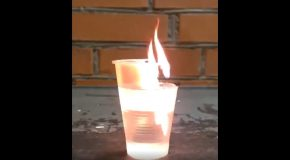 What Happens When You Light A Plastic Cup On Fire With Water In It!