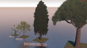 Cool Comparison Of Tree Sizes Using 3D Tech!